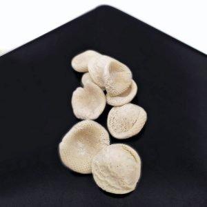 Pasta pugliese tradizionale made in Puglia